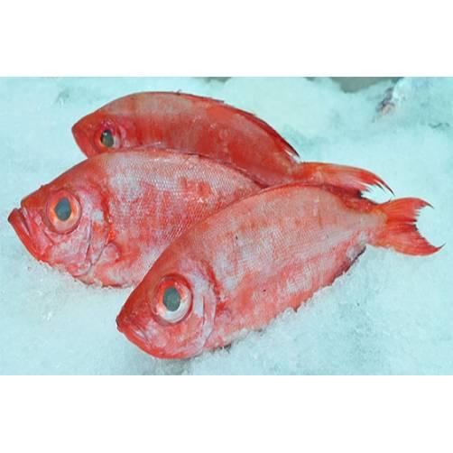 Cá bã trầu |cửa hàng đặc sản phan rang tại TP.HCM