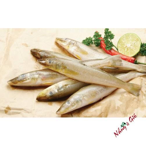 Cá Bóng Đục| Cửa hàng đặc sản phan rang tại TP.HCM