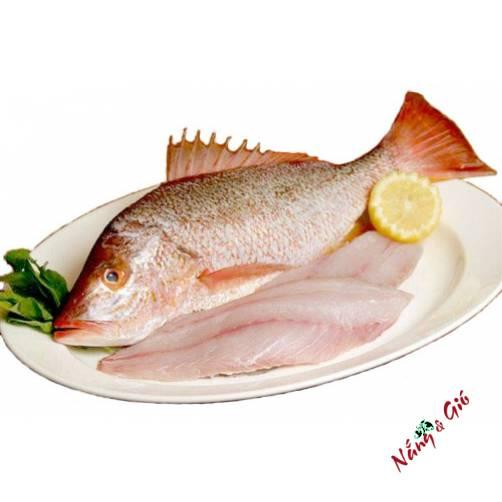 Cá hồng Sáp | Cửa hàng đặc sản phan rang tại TP.HCM