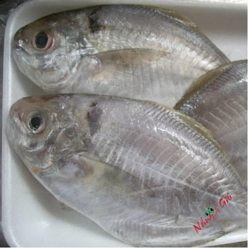 Cá Liệt