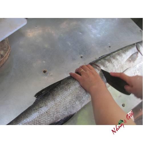 Cá Nhồng