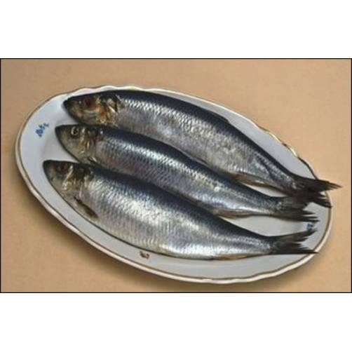 Cá Trích | Cửa hàng đặc sản phan rang tại TP.HCM
